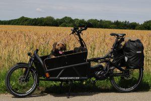 E-Cargo-Bike Load Riese und Müller Lastenrad